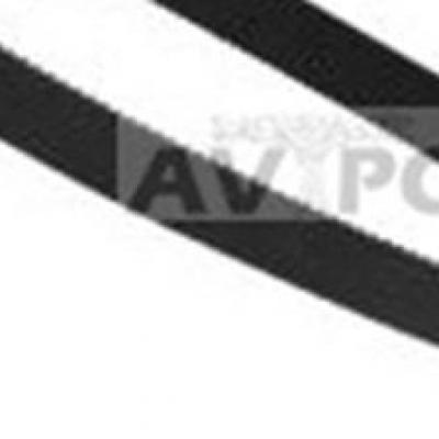 Courroie Electroportatif BLACK & DECKER T976615 - T 976615 - 7471