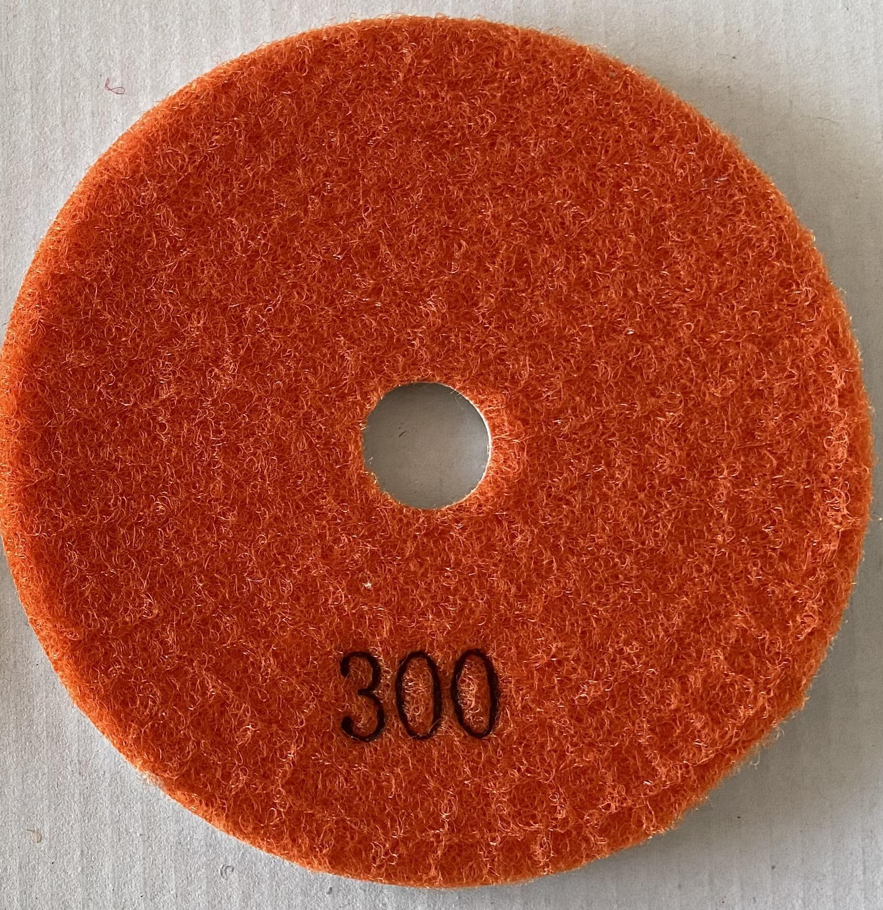 Pad 301